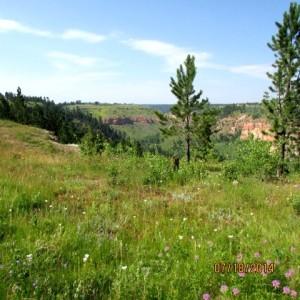 Real Estate for Sale in Billings, Lockwood, Laurel, Shepherd, Huntley, Worden and Yellowstone County.